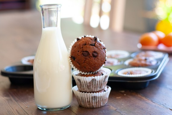 Quick and Easy Chocolate chip muffins